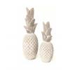 Ananas - GM